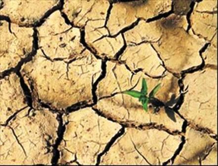 Dünya su kıtlığı tehdidi altında