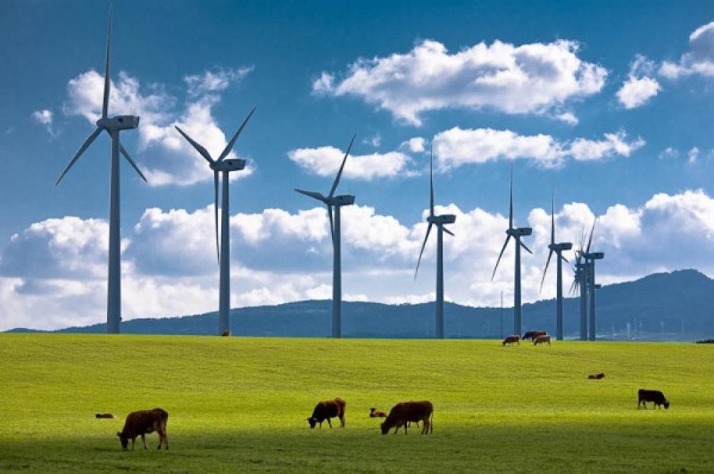 ABD rüzgarı geçen yıl hızlı esti