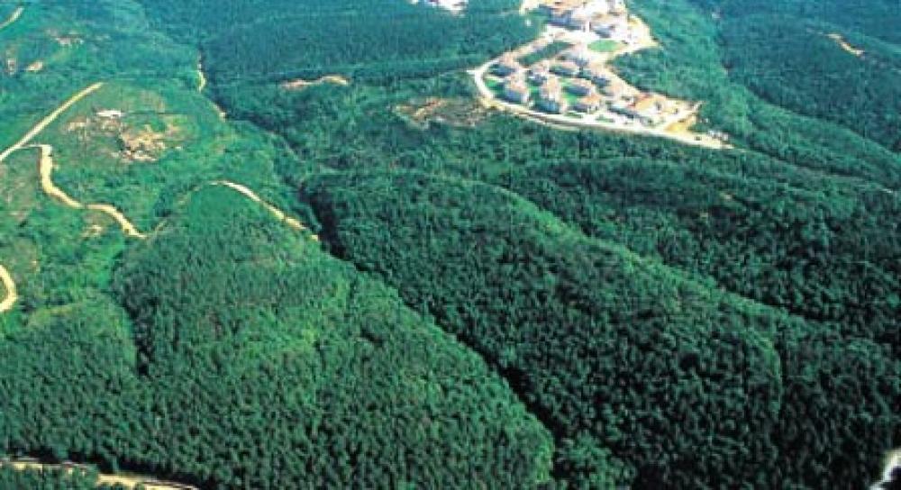 Orman köylüsü güneşten elektrik üretecek