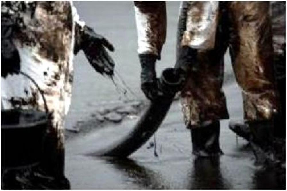 Kocaeli Körfezi'ne yarım ton yakıt sızdı