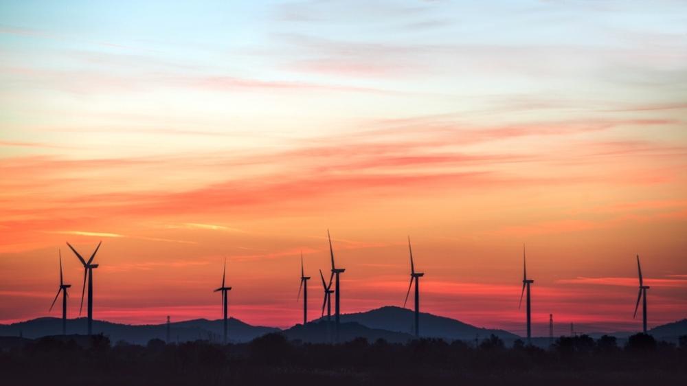 Suudi Arabistan'ın ilk rüzgar santrali kuruluyor