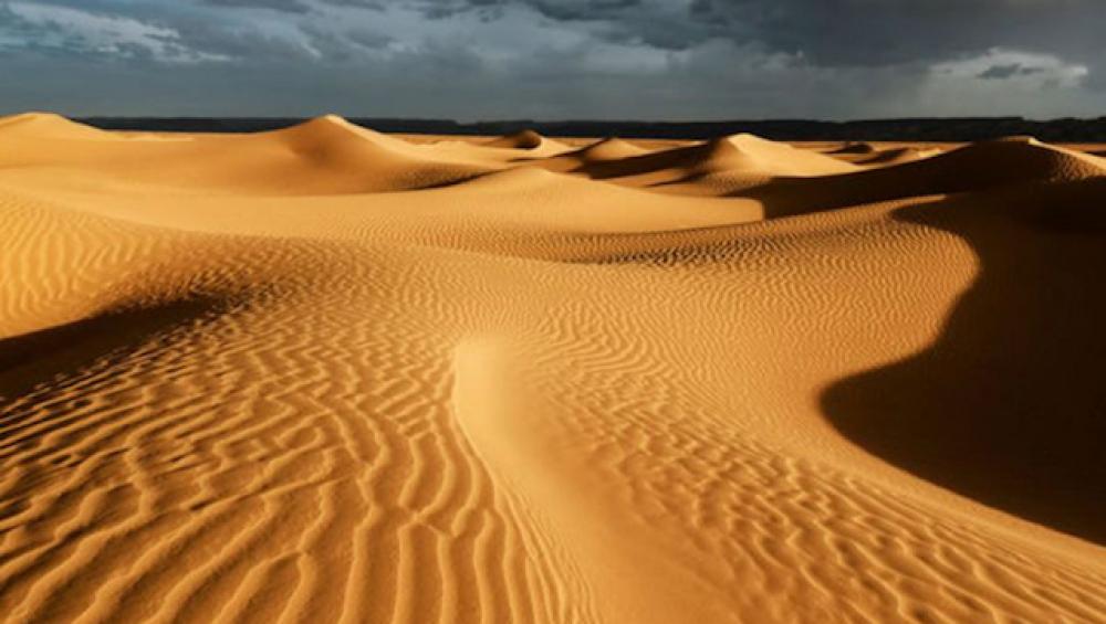 Rüzgar ve güneş enerjisi Sahra çölünü yeşillendirebilir