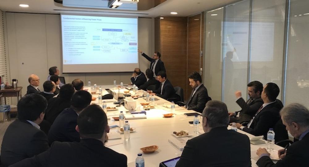 Özbekistan Türkiye elektrik özelleştirme deneyimlerinden yararlanacak