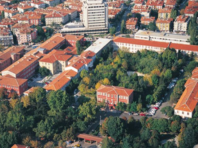 Ankara Üniversitesi enerji hocaları arıyor