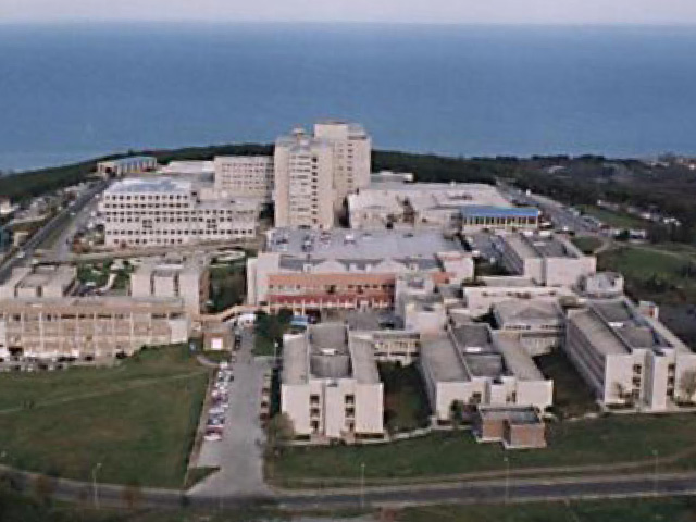 Sinop Üniversitesi nükleer uzmanı arıyor