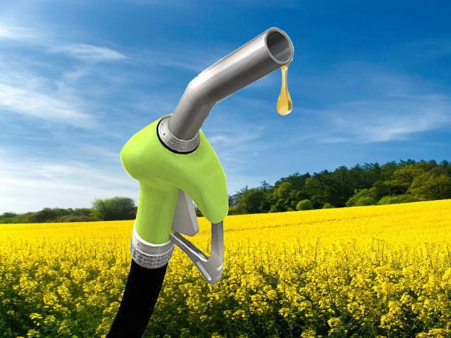 Biodizel harmanlama yükümlülüğü devredilebilecek