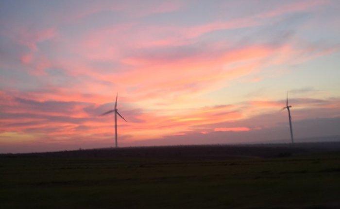 İrlanda'da rüzgarın payı yüzde 37'ye yükseldi