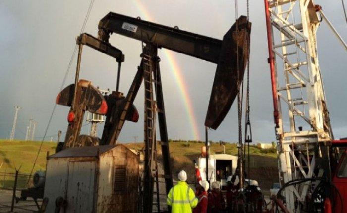 Arar Petrol Gökçeada'da petrol aramak istiyor