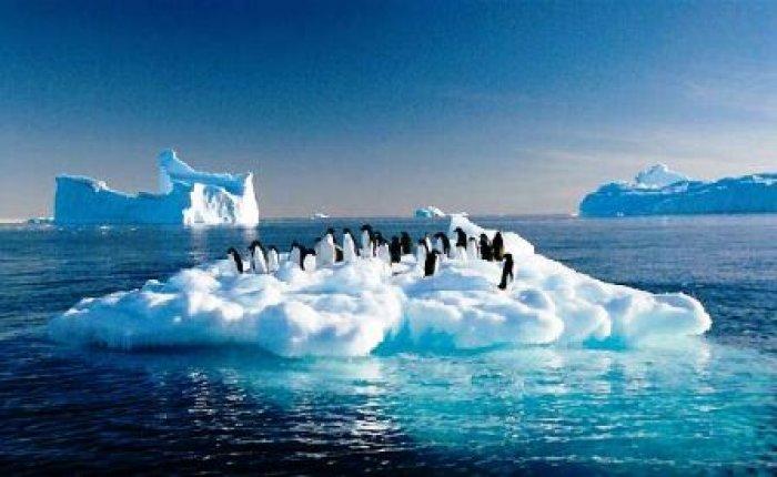 ABD Paris İklim Anlaşması'ndan çekilme sürecini başlattı