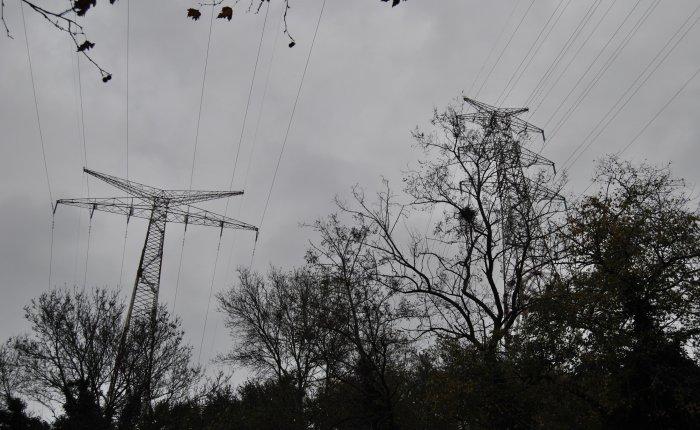 Spot elektrik fiyatı 23.09.2020 için 312.23 TL