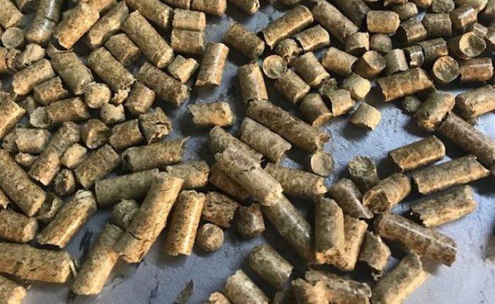 Kastamonu'da bitkisel atıklardan pelet üretilecek