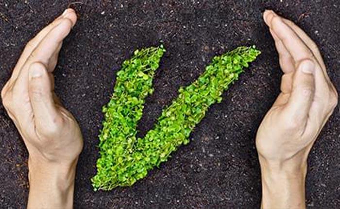 VakıfBank, Karbon Negatif kuruluş oldu