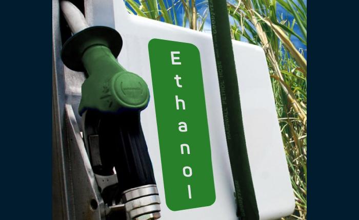 Hindistan 2030'da etanol karışım oranını %20'ye çıkaracak