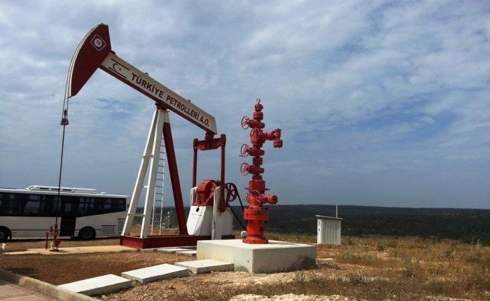 TPAO Silopi'de petrol arayacak