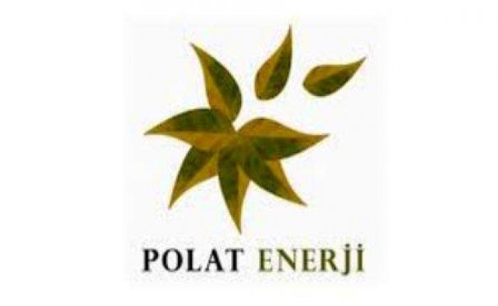 Adnan Polat, Polat Enerji'nin tüm hisselerini devraldı