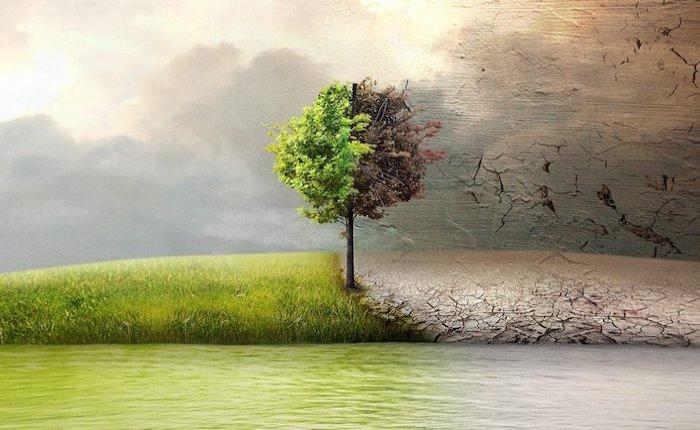 İklim değişikliği dünya ekonomisini yüzde 18 küçültebilir