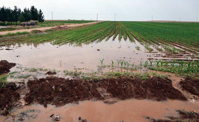 Kuraklık Güneydoğu'da çiftçinin elektrik borcunu katlayabilir