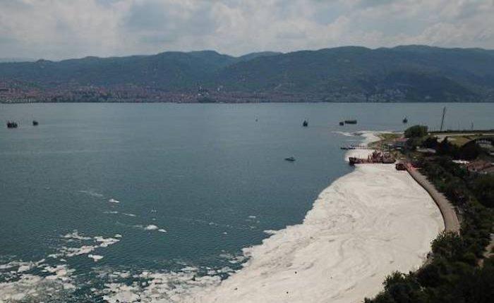 İşte Marmara Denizi'ni müsilajdan kurtaracak eylem planı!