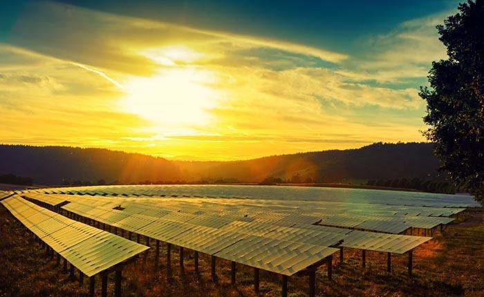 Japan Energy'nin Boras'ı devralmasına rekabet izni