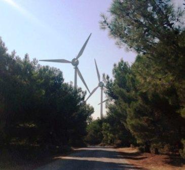 Rüzgârcıların orman izni sorunu tartışılacak