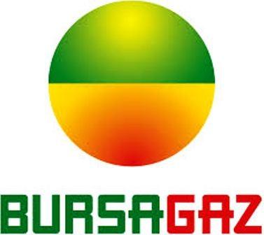 Bursagaz`a Türkiye`nin En iyi 3`üncü İşvereni Ödülü