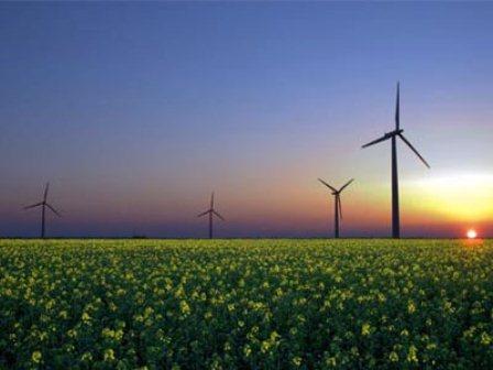 İngiltere Enerji Bakanı, rüzgar santrallerine karşı