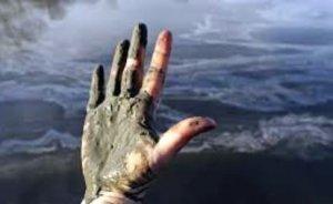 Duke Energy çevreye verdiği zararı ödeyecek