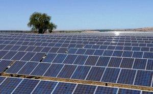 Ortadoğu`nun en büyük güneş santrali kuruluyor