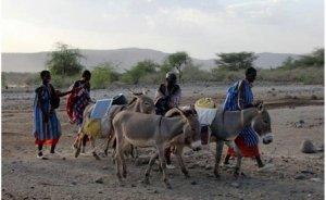 Kenya`da elektriğe eşekli çözüm