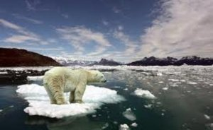 Kutuplarda enerji aramalarına karşı yasa tasarısı