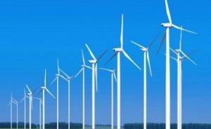 Avrupa elektriğinin yüzde 8`i rüzgardan