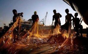 İklim değişikliği balıkçılığı vuracak