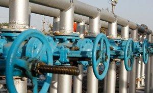 Ukrayna doğalgazda Doğu Avrupa`ya yöneldi