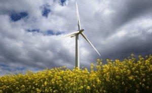 2030'da Avrupa enerjisinin yüzde 25'i rüzgardan