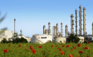 BASF iklim koruma çalışmalarında lider gösterildi