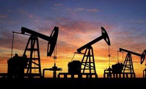 Albayrak: Petrol 40 doların altında kalır