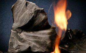 Fransız çevrecilerden kaya gazı protestosu
