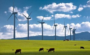 Dünya rüzgar kapasitesinin yüzde 1,5'u Türkiye`den