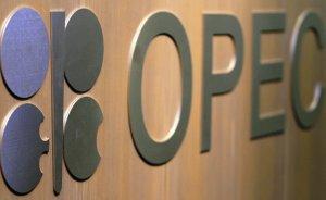 OPEC 2016 petrol talebi büyüme tahminini düşürdü