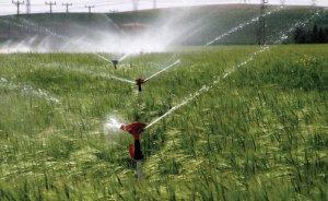 Elektrik borcu bulunan çiftçiye destek yok