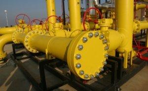 Borusan Meksika'ya doğalgaz borusu satacak