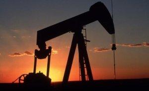 TPAO dört petrol arama lisansı istedi