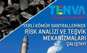 Yerli kömür santrallerinde riskler değerlendirilecek