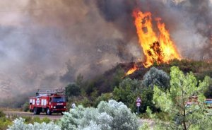 Orman yangınları ve elektrik şebekeleri