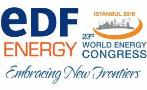 İstanbul'daki Dünya Enerji Kongresi'ne Fransız gümüşü