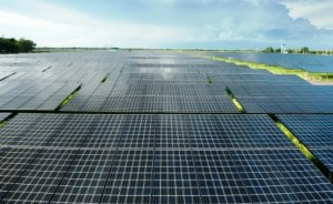Muğla'daki üç GES projesine ÇED gerekli değil