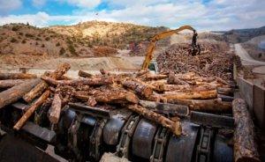 Kastamonu`daki enerji santrali için ÇED gerekli görülmedi
