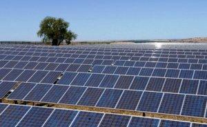 Elazığ'a 2 MW'lık GES kurulacak