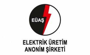 EÜAŞ Kışlaköy projesi için danışmanlık hizmeti alacak