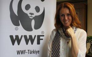 WWF-Türkiye Genel Müdürü Aslı Pasinli oldu